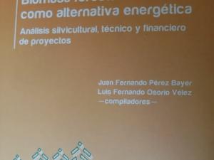 Libro La Biomasa Forestal Como Alternativa Energética