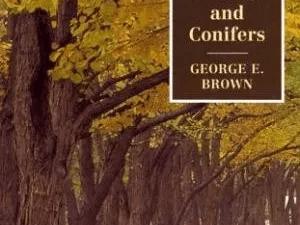 Libro Poda De Arboles, Arbustos Y Conìferas George E. Brown