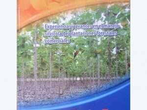 Experiencias Avances Manejo Silvícola De Plantaciones Forestales