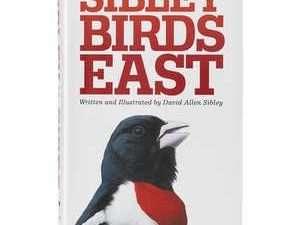 Guía de campo de las aves de Norteamérica Sibley