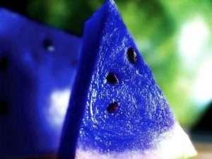 Semillas  exóticas de Sandía Azul