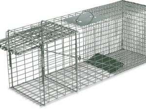 Trampa jaula para vida salvaje con puerta única duke de  32 «x 10» x 12 «