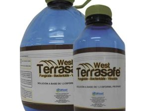 Desinfectante de Suelos West Terrasafe