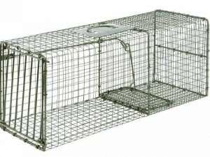 Trampa jaula para vida salvaje con puerta única resistente de 36″x15″x14″