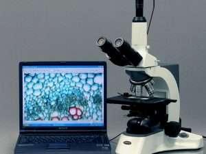 Cámara Microscopio Usb Amscope 5.0 Mp Usb Md500 Video