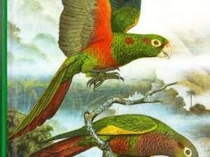 Libro Loros De Colombia/ Conservation International