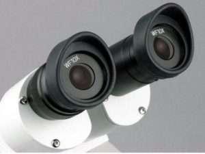 Microscopio estéreo AmScope 20X-40X