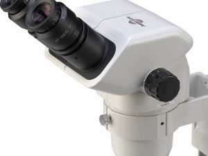 Microscopio Estéreo Con Zoom Binocular Accu-scope®