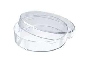 Caja De Petri En Vidrio De 60×15 Mm