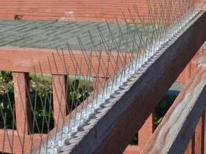 Ahuyentador Chuzos Punzones Agujas 5 metros  Plástico Pájaro Paloma